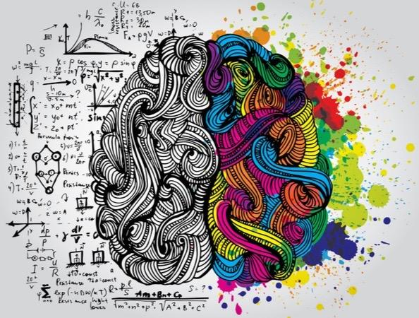 Brain demonstrating a visual depiction of UI vs UX
